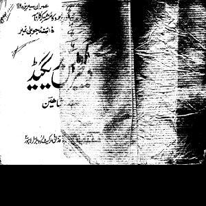 Dangerous Brigade Imran Series