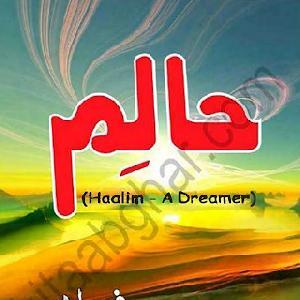 Haalim Episode 17