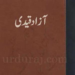 Azad Qaidi