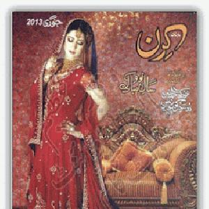 Kiran Digest January 2013