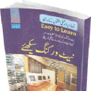 Learn Networking In URDU PDF
