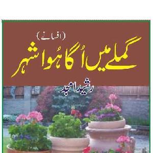 Gamlay Mein Uga Howa Shehar