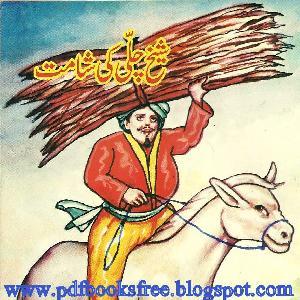 Sheikh Chilli ki Shamat