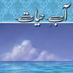 Aab E Hayat Episode 8