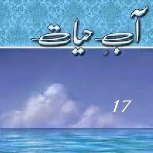 Aab E Hayat Episode 17