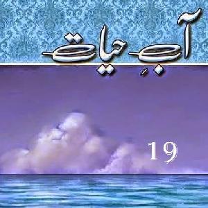 Aab E Hayat Episode 19