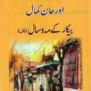 BeKar Kay Mah o Saal (Novel)