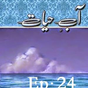 Aab E Hayat Episode 24
