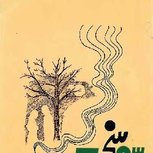 Sohni (Punjabi Poetry)