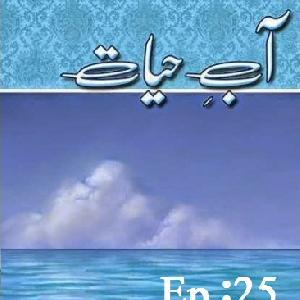 Aab E Hayat Last Episode 25